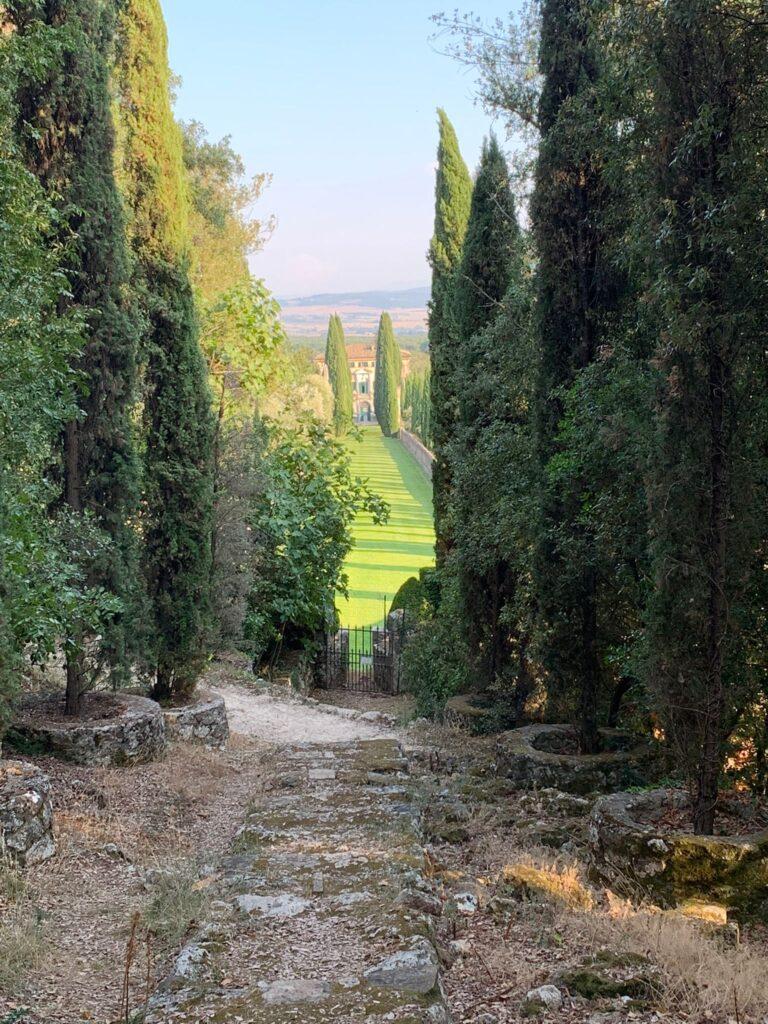 Foto: un viale alberato con visa della campagna circondato da cipressi